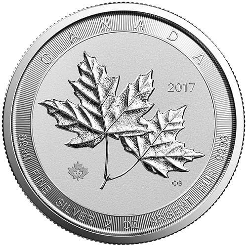 Silver Twin Maples Birch Gold Group