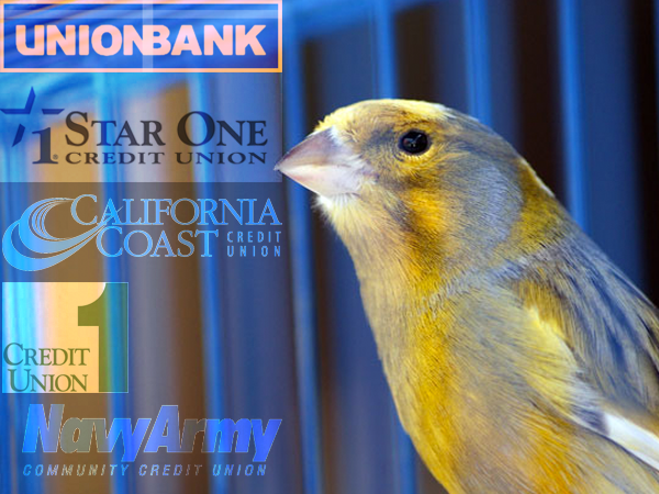 small banks are economic canary
