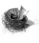 An image of a nest with a hundred dollar bill in it
